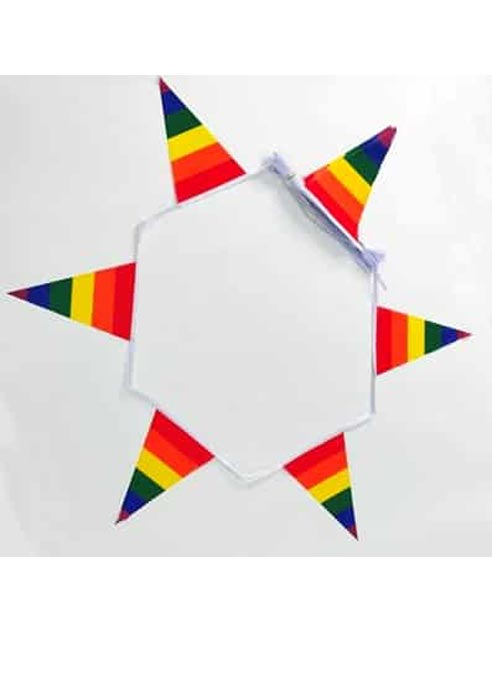 Bunting Rainbow Triangle 19 x 30 cm
