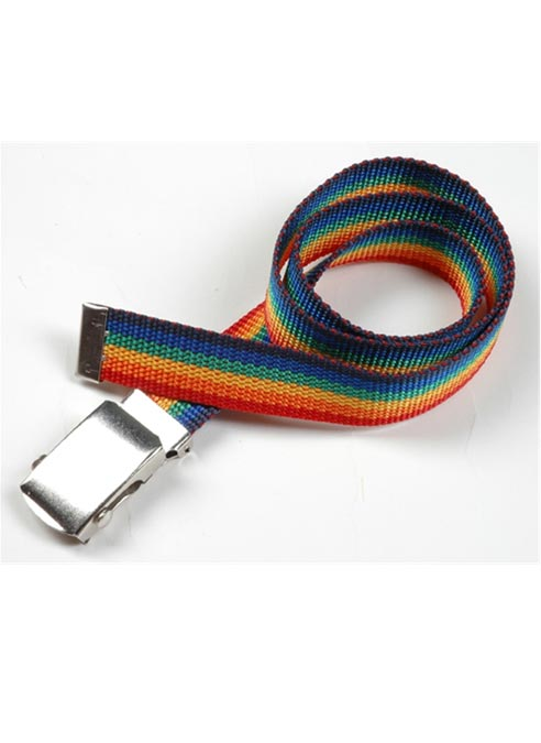 Rainbow Belt Small