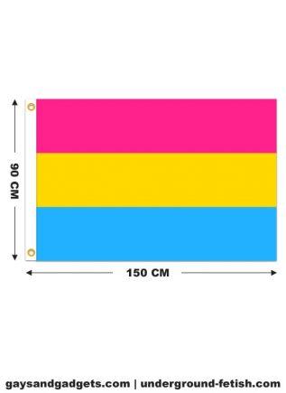Flag Pansexual Pride Printed 90 x 150 cm