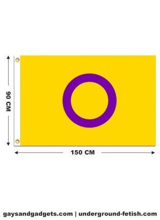 Flag Intersex Pride Printed 90 x 150 cm