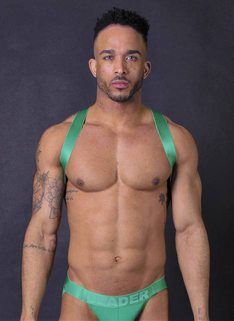 Leader X Back Harness Green Small
